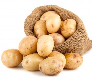 Ripe potatoes in a burlap bag isolated on white background